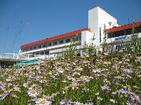 Akakura New Hotel